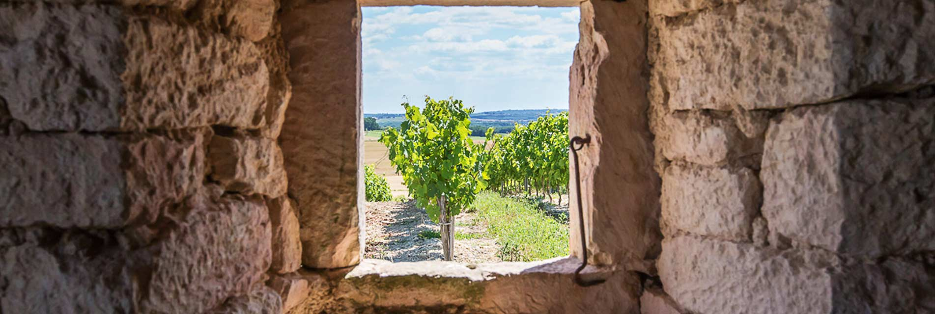 Nos Locations de vacances à petits prix dans le Tarn en Occitanie