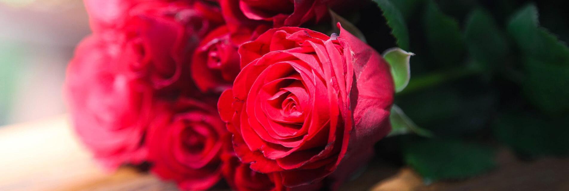 Réservez votre week-end romantique pour la Saint Valentin dans le Tarn