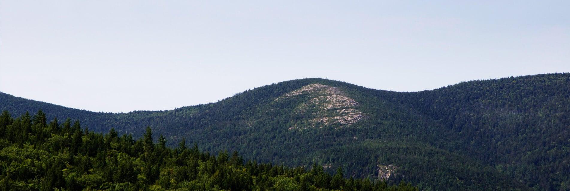 Vacances en Montagne Noire Tarn Occitanie