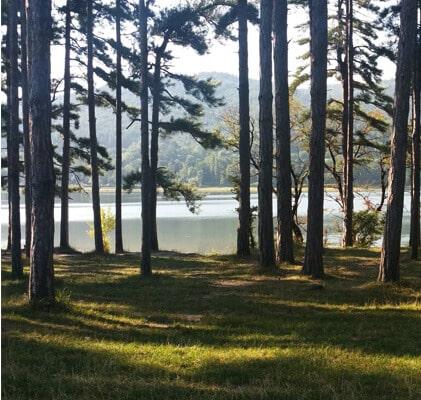 Vacances au Lac Saint Ferréol, Vacances Tarn